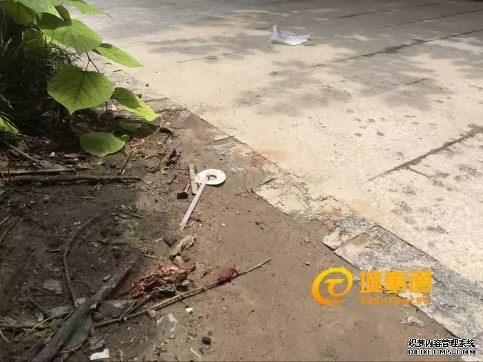 杭州这位爸爸父亲节前完美仿盛大热血传奇,当场身亡!原因家人真的想不到!